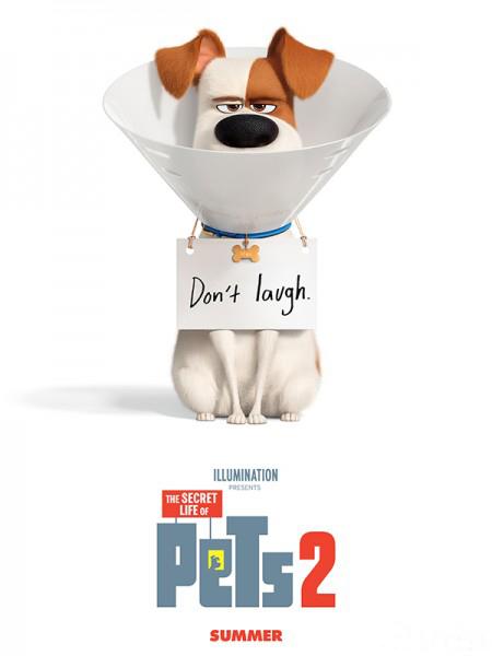 Phim Đẳng cấp thú cưng 2